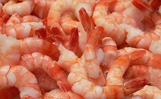 imagen de crustáceos