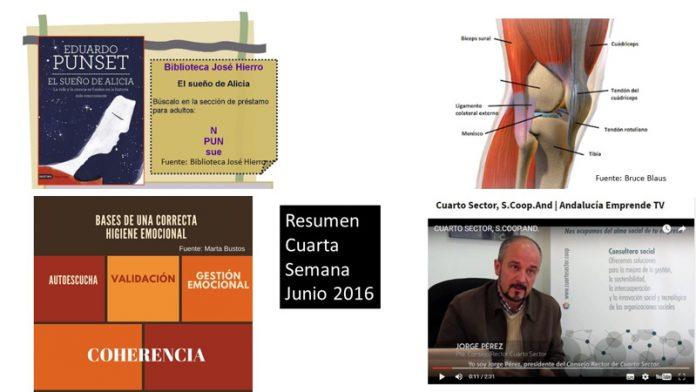 Resumen Cuarta Semana Junio 2016