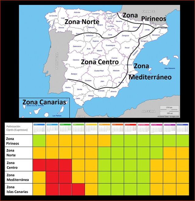 Alergia al polen de cupresáceas, cipreses y arizónicas.